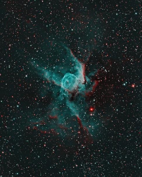 Шлем Тора или NGC 2359 (LBN 1041