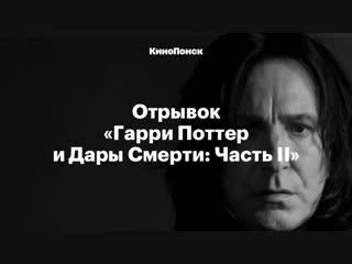 Алан Рикман в роли Северуса Снейпа