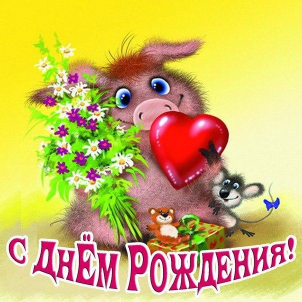 поздравления с днем рождения кабан виды спатифиллума