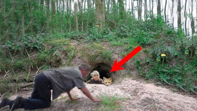 Ради спасения малыша он полез в лисью нору и был поражен увиденным