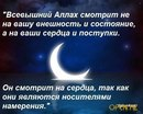 Фотоальбом Шахина Мирзаева