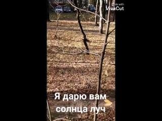 А вот и обещанное солнышко в Москве