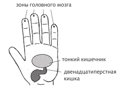 Как запустить кишечник?, изображение №4