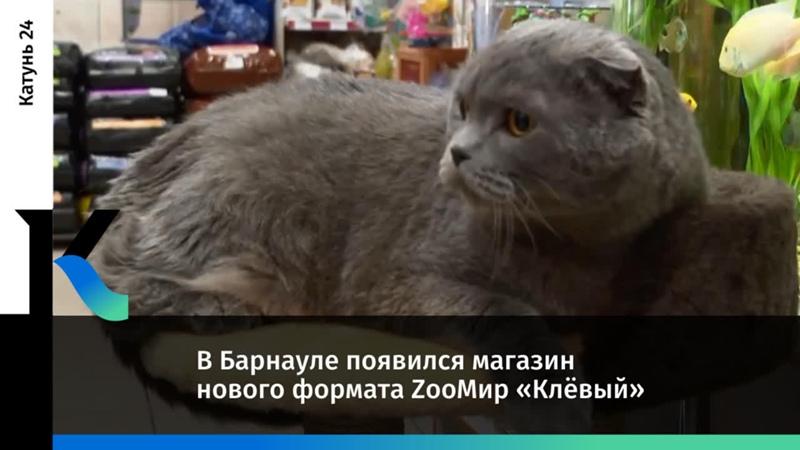 В Барнауле появился магазин нового формата ZooМир Клёвый