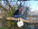 Фотоальбом Ganna Filyushina