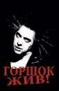 Личный фотоальбом Богдана Шептура