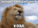 Личный фотоальбом Дениса Котёнина