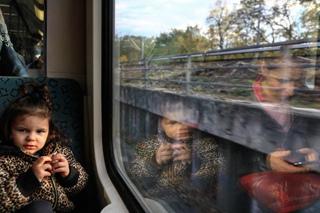 Алексей Захаров фотография #35