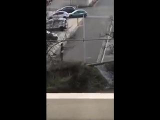 Ничего необычного, просто прогуливающийся по улице в одних трусах беженец решил избить оказавшуюся поблизости женщину. Нюрнберг,