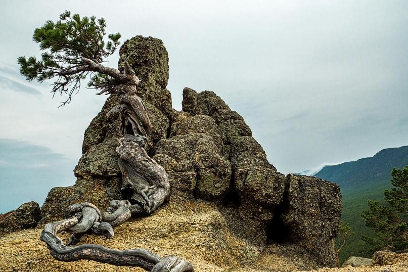 Байкальская Ривьера 2021 год, изображение №17