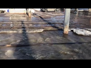 Потоп фекалий возле администрации Мотовилихи