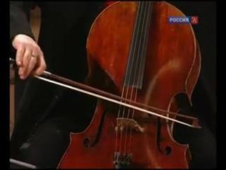 Собрание исполнений. Йозеф Гайдн. Концерт для 4-х солирующих инструментов с оркестром