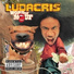 Disturbing tha peace feat ludacris mystikal i 20