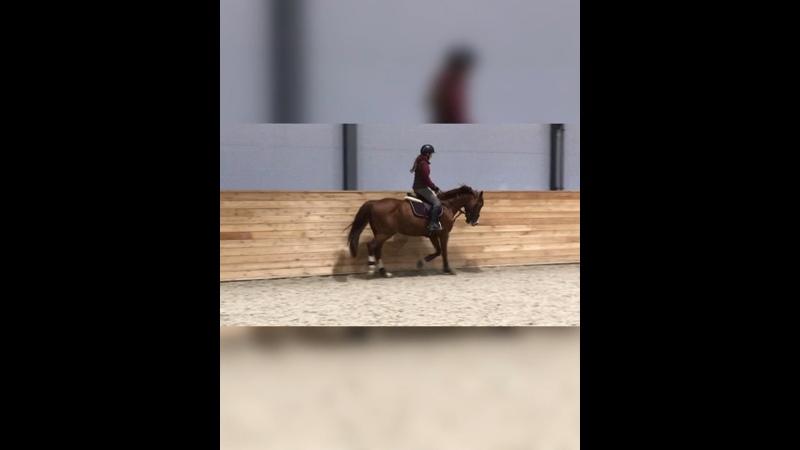 Видео от Анны Лобовы