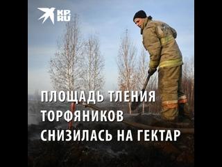 В Екатеринбурге площадь тления торфяников сократил...