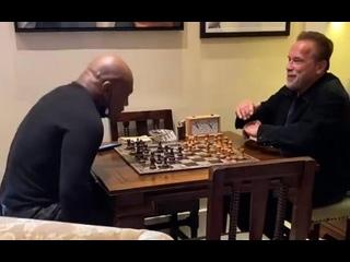 Арни и Майк Тайсон играют в шахматы в доме губернатора