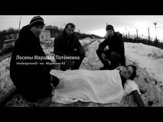 UnDM#2  Лосины Маршала Потёмкина