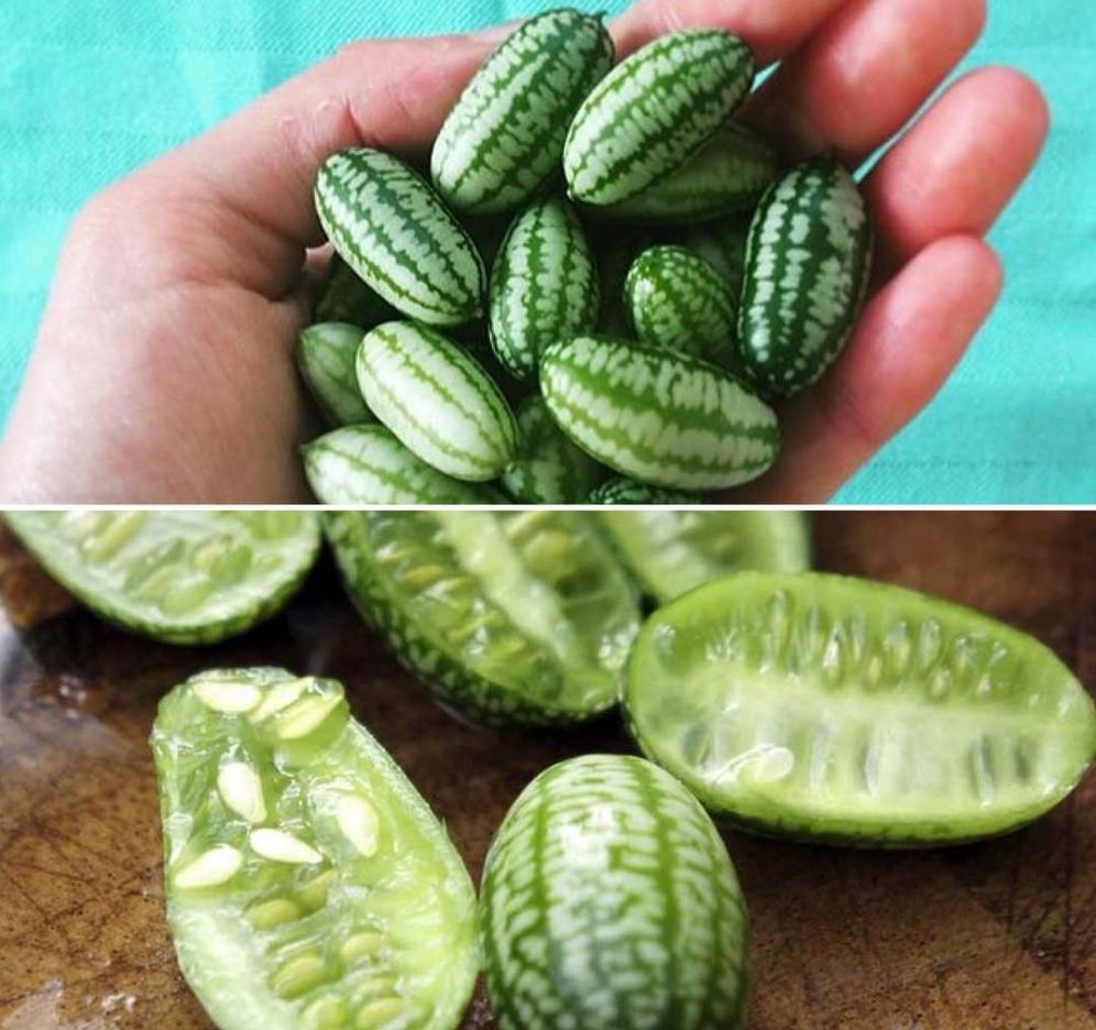 Несколько редчайших экзотических фруктов, о которых мало кто знает