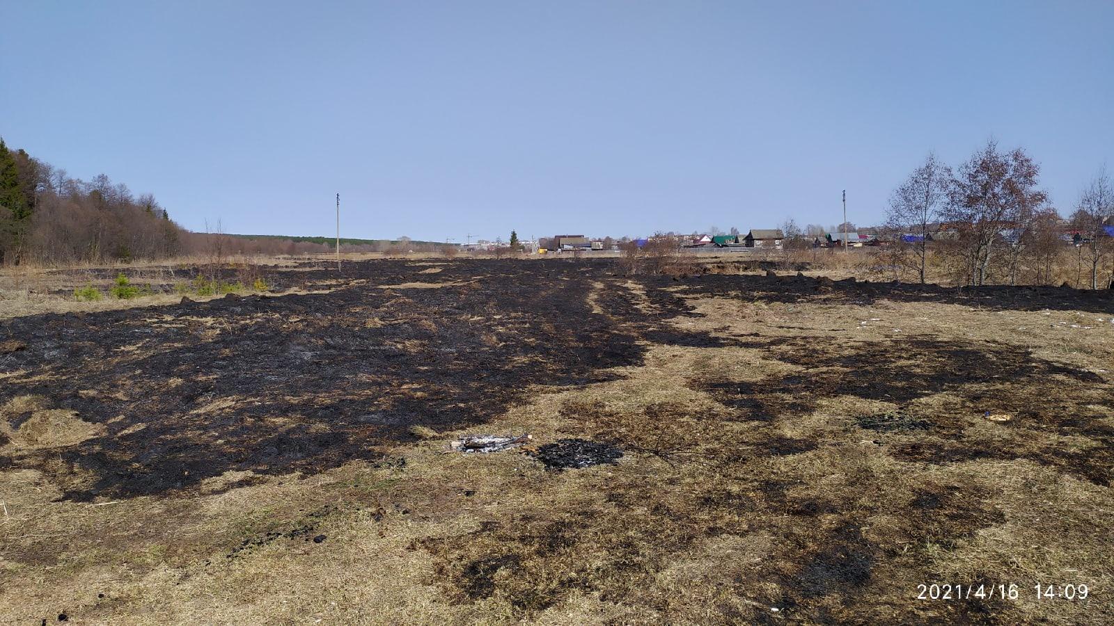 #ОтПодписчикаПодожгли луга на Цыганском поселке.Сгорели гектары (по