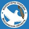 Волонтёры Победы. Московская область