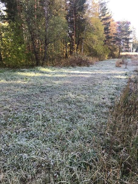 В Челябинской области на три дня потеплеет до +16 ...