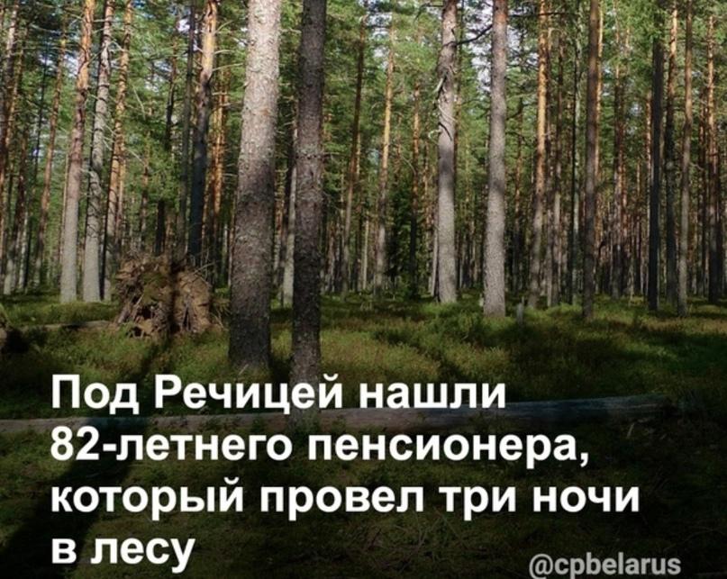 Под Речицей нашли 82-летнего пенсионера, который провел три ночи в лесу