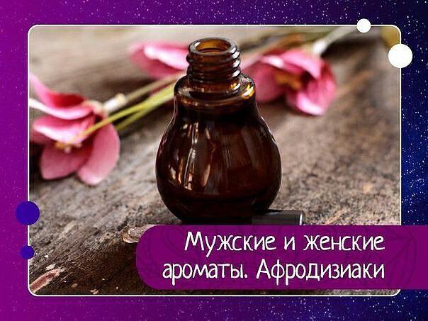 Мужские и женские ароматы. Афродизиаки