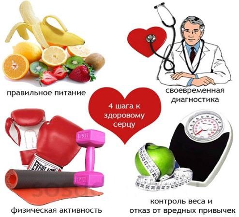 Сердечные недуги. Причины и профилактика заболеваний, изображение №3