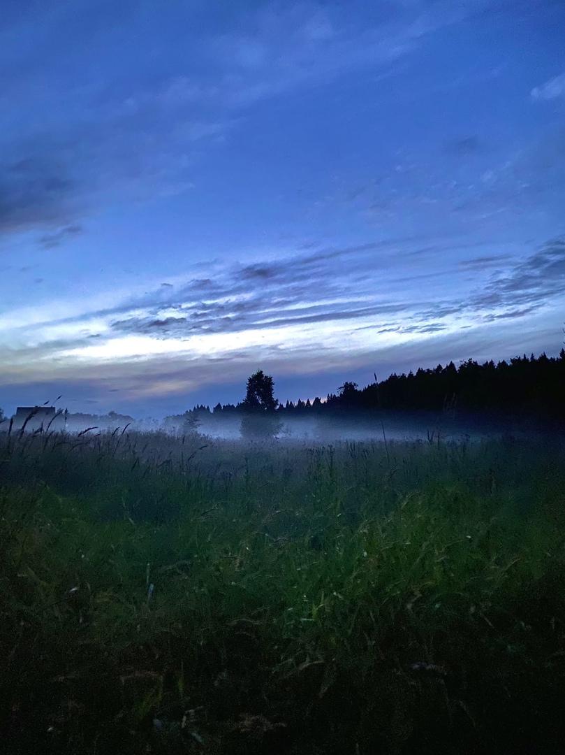фото из альбома Никиты Васина №9