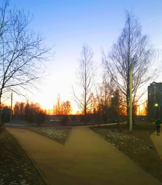 Зимними вечерами во время заката мир обретает особую чёткость Деревья выделяются на фоне неба до мельчайшей веточки, словно в природном full HD. Воздух становится прозрачнее, и кажется, что