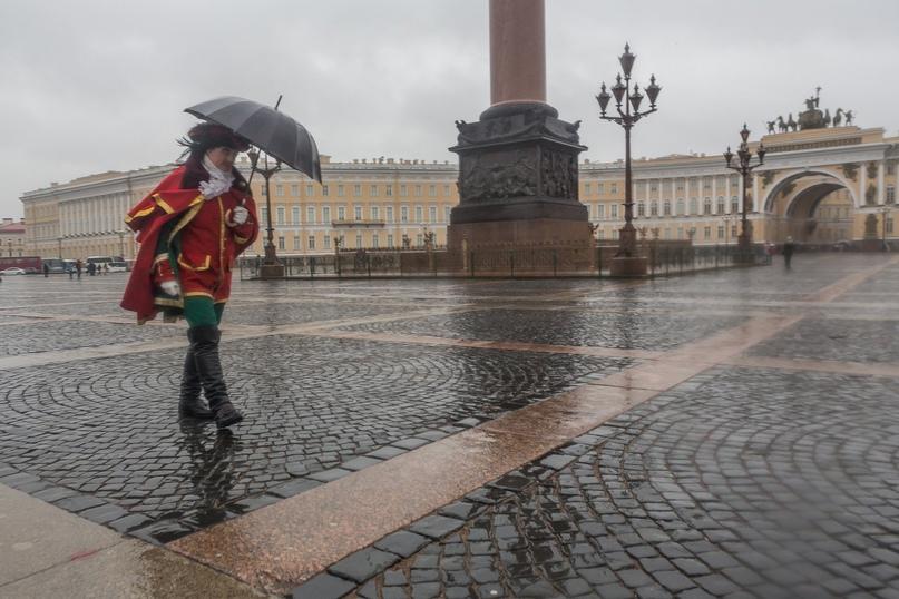 В четверг, 6 мая, в Петербурге ожидается усиление ветра, сообщают в пресс-службе...