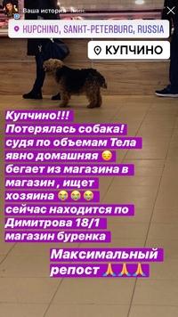 Лариса Румянцева фото №18