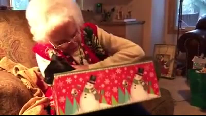 Grandma recieves black cat