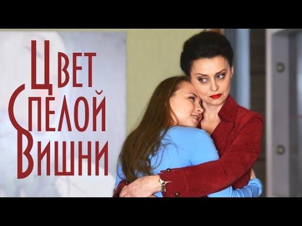Цвет спелой вишни Фильм 2017 Мелодрама Еще вчера у Кати Евгения Нохрина не было забот
