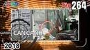 CAMERA CẬN CẢNH   Tập 264 FULL   Nỗi lo trạm biến áp - Tạt đầu xe nguy hiểm - Vòng xoay tử thần ⭐