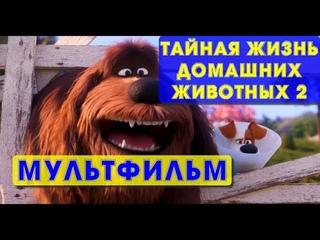 Мультфильм про собаку Тайная жизнь домашних животных 2 забавный семейный мультик 2019