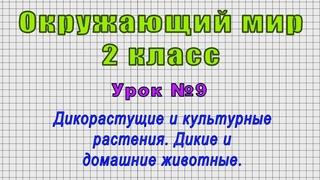 Окружающий мир 2 класс (Урок№9 - Дикорастущие и культурные растения. Дикие и домашние животные.)