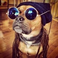 Фотография профиля Влада Зайцева ВКонтакте