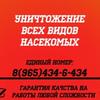 Дезинсекция Воскресенск