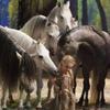 Свободные лошади: лидерство, доверие, дружба