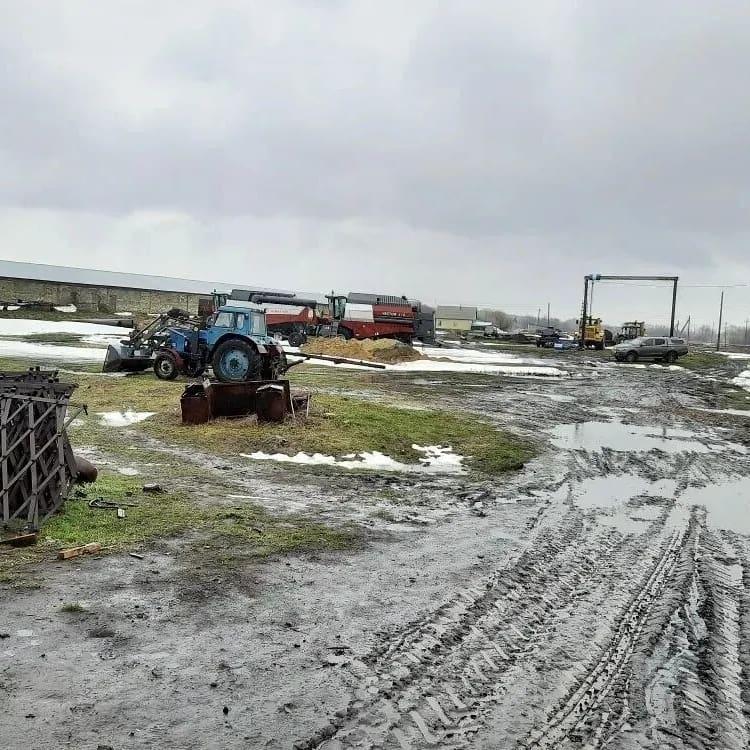 Аграрии Петровского района ведут сев ранних яровых культур