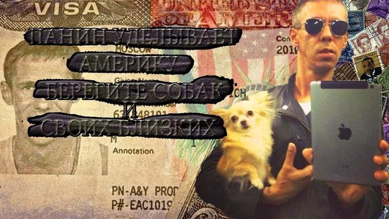 Панин Уделывает Америку США Берегите собак и своих близких