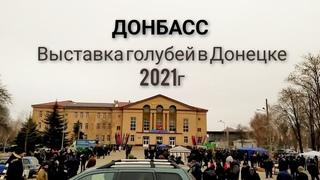 Выставка голубей в Донецке 21февраоя 2021года.Exhibition of pigeons in Donetsk.