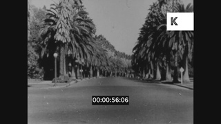 1930s Hollywood, Early Cars, POV Driving On Sunset Boulevard, 16mm